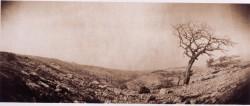 South-of-Jerusalem/1984/55x20cm