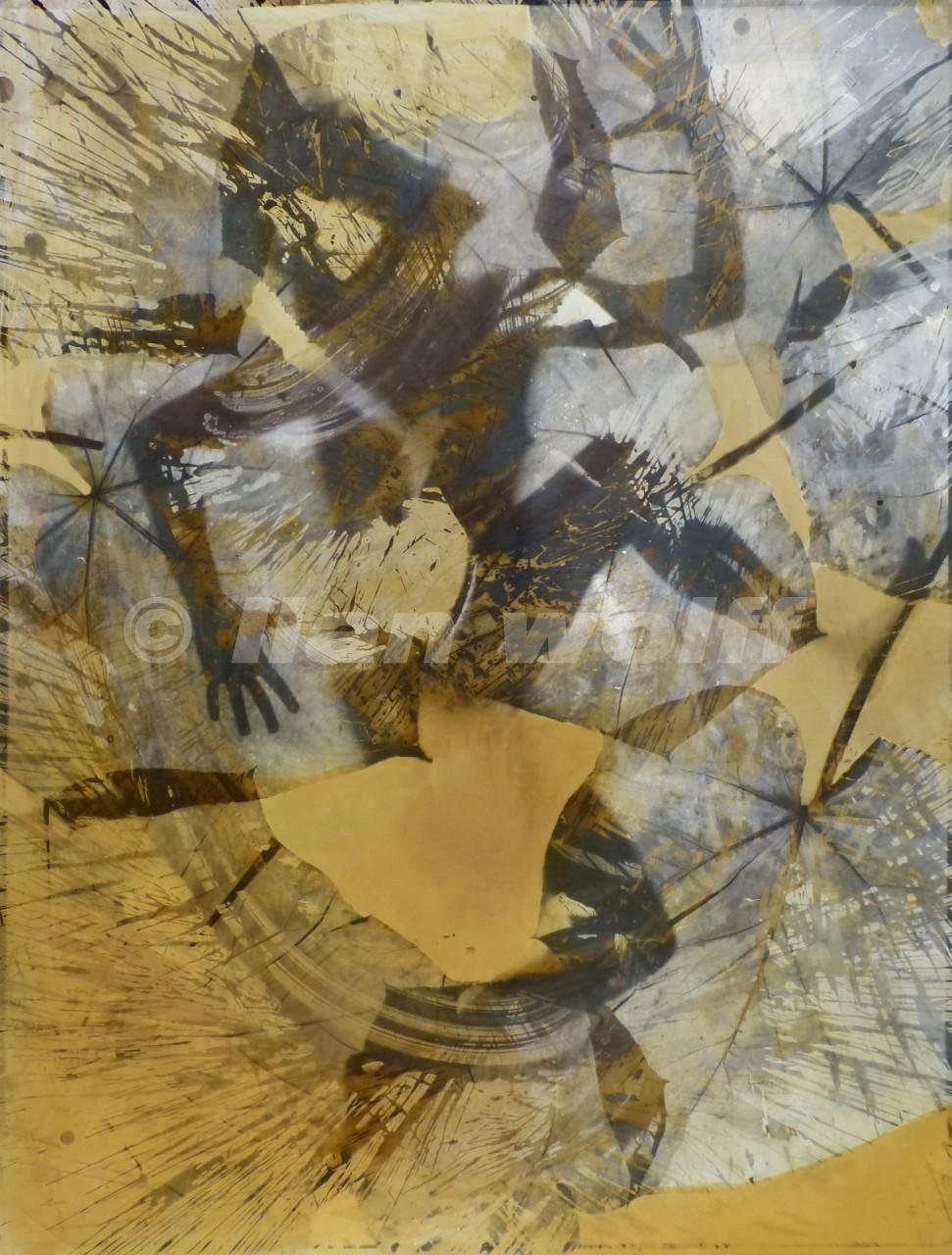creation-no5-12005-12photogram