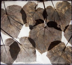 Leaves-no-1-2005-110x125cm