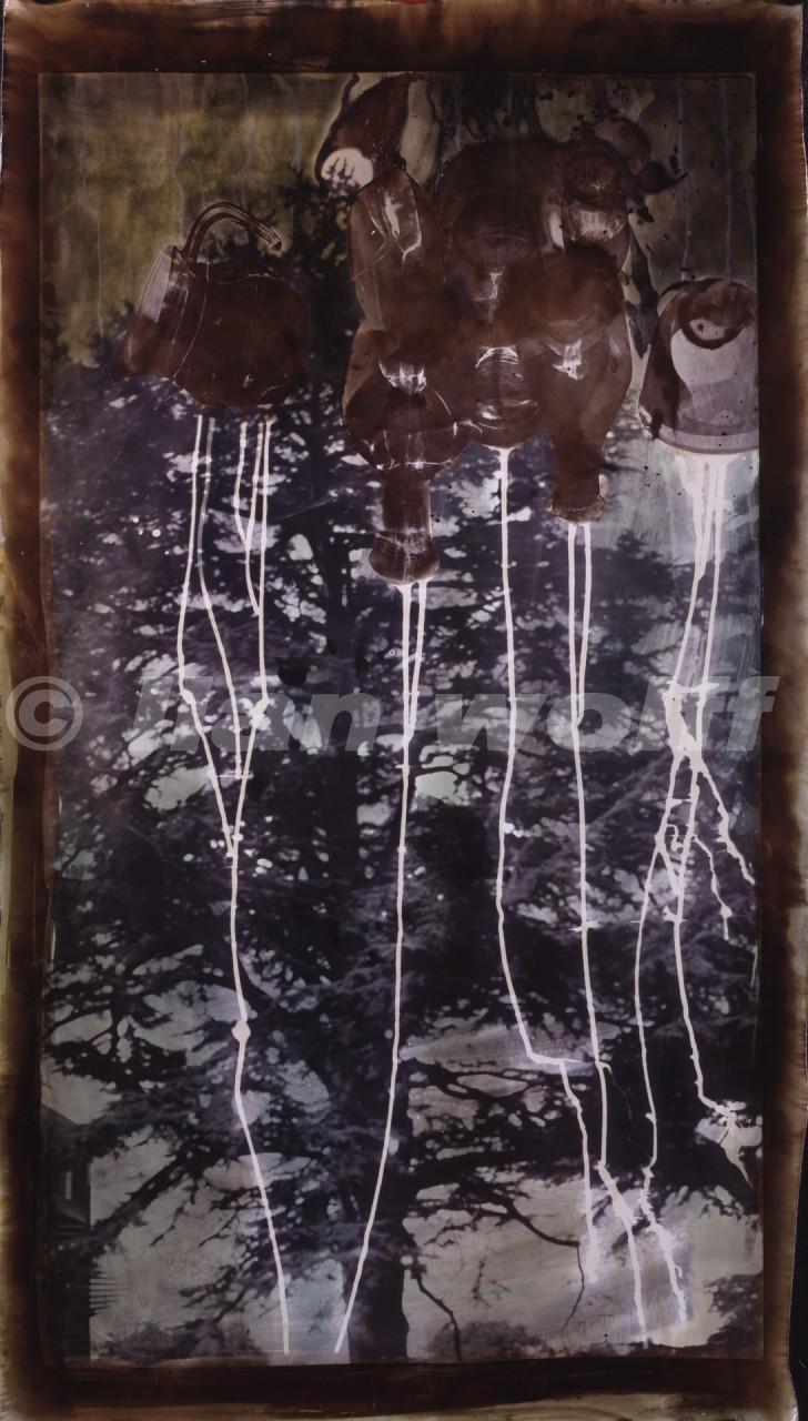 still-life-of-light-2/France/1996/50x90cm